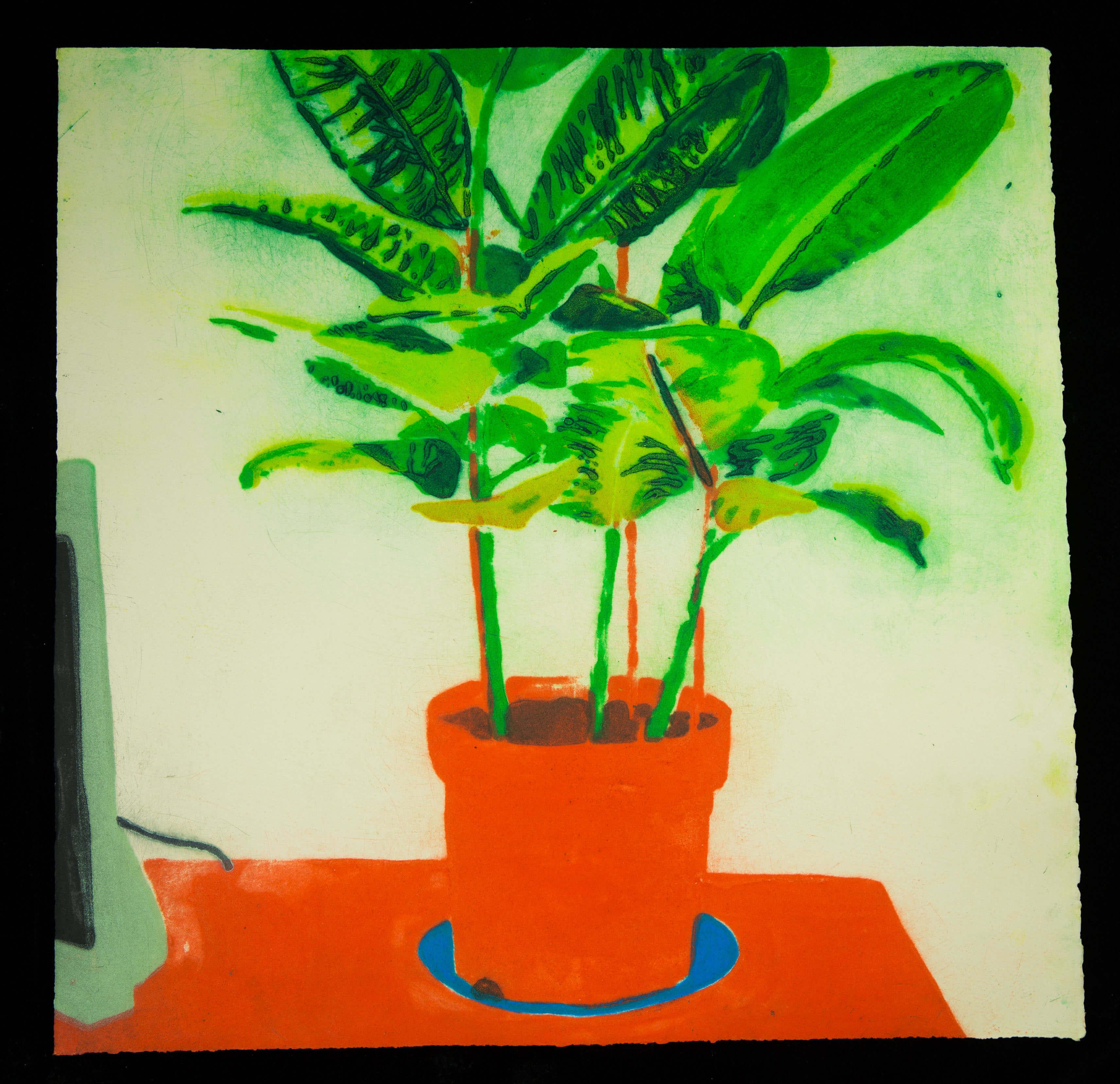 House Plant I, 2015